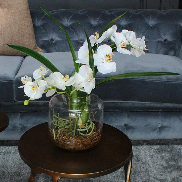 Silk-Phalaenopsis-Orchids-in-waiting-room.jpg